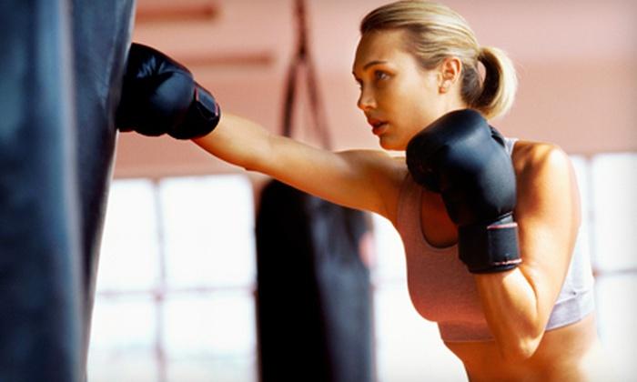 YMA Krav Maga - Arlington Heights: 5, 10, or 15 Krav Maga or Boxing Fitness Classes at YMA Krav Maga in Arlington Heights (Up to 81% Off)
