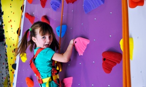 Origin Climbing and Fitness: $125 for One Week of Half-Day Summer Climbing Camp at Origin Climbing and Fitness