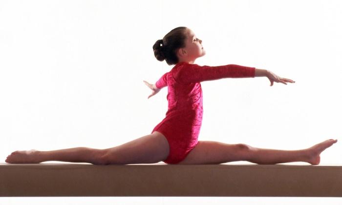Gym America - Gymnastics, Dance And Aerial Arts, Llc - Floris: Four Weeks of Tumbling Classes at Gym America - Gymnastics, Dance And Aerial Arts, Llc (57% Off)