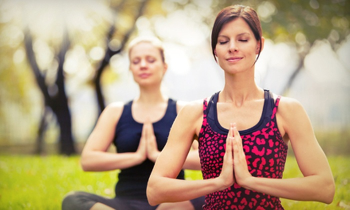 The Yoga Boutique - Lakeview: 5 or 10 Lakefront Yoga or Outdoor Boot-Camp Classes from The Yoga Boutique (Up to 67% Off)