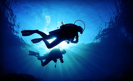 One open water or pool discovery dive