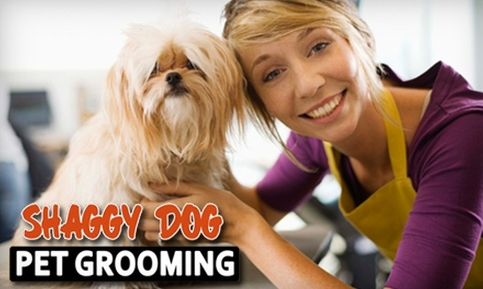 Shaggy Dog Pet Grooming - Heights: $65 for a Year of Self-Service Dog Washes (Up to $144 Value) or $6 for a Single Wash (Up to $12 Value) at Shaggy Dog Pet Grooming.