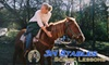 3 H Stables - Huntsville: $15 for a 60-Minute Scenic Horseback Lesson at 3 H Stables