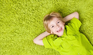 Green Solutions Carpet Cleaning: Carpet, Rug, or Sofa Steam Cleaning from Green Solutions Carpet Cleaning (86% Off). Three Options Available.