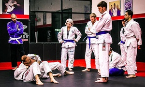 Disciple Mixed Martial Arts Academy: $29 for One Month of Unlimited Martial Arts Classes at Disciple Mixed Martial Arts Academy ($175 Value)