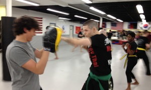 Roshankish Krav Maga: Five Boxing or Kickboxing Classes at Roshankish Martial Arts (50% Off)