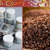 Ethnic Foods Company - Brooklyn Park - Maple Grove: $10 for $20 Worth of Natural Spices and Pantry Products from Ethnic Foods Company in Osseo