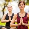 79% Off Yoga at The Yogi Tree in Toluca Lake