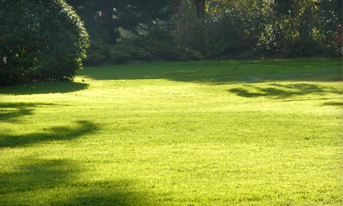 Pro-Green Inc. - Detroit: Lawn-Care Services from Pro-Green Inc. (Up to 54% Off). Two Options Available.