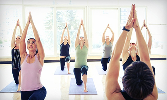 Dancing Dogs Yoga - Old Irving Park: 10 Yoga Classes or One Month of Unlimited Yoga Classes at Dancing Dogs Yoga (Up to 71% Off)