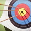 61% Off Archery at The Archer's Edge in Oakdale