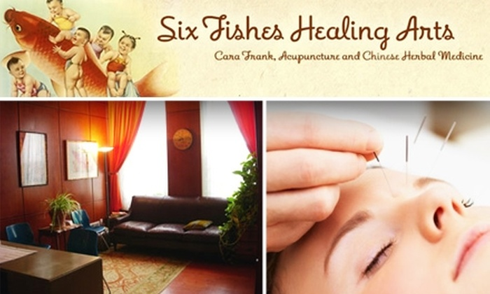 Six Fishes Healing Arts - Graduate Hospital: $50 for a 90-Minute Acupuncture Session at Six Fishes Healing Arts (Up to $135 Value)