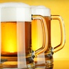 Brewery Tour Package for Two or Four