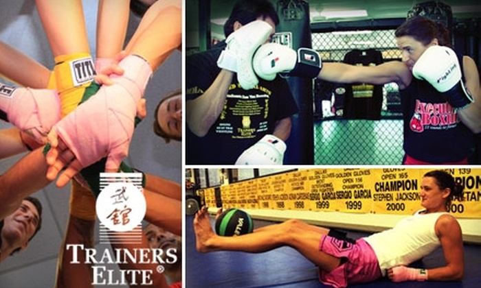Trainers Elite - Addison: $29 for One Month of Unlimited Boxing, Kickboxing, and Fitness Classes and a T-Shirt at Trainers Elite in Addison ($140 Value)