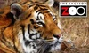 Jackson Zoo - Jackson: $8 for Two Adult Admissions to The Jackson Zoo (Up to $16 Value)