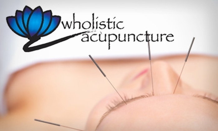 Wholistic Acupuncture - East Liberty: $35 for a One-Hour Acupuncture Session at Wholistic Acupuncture ($75 Value)