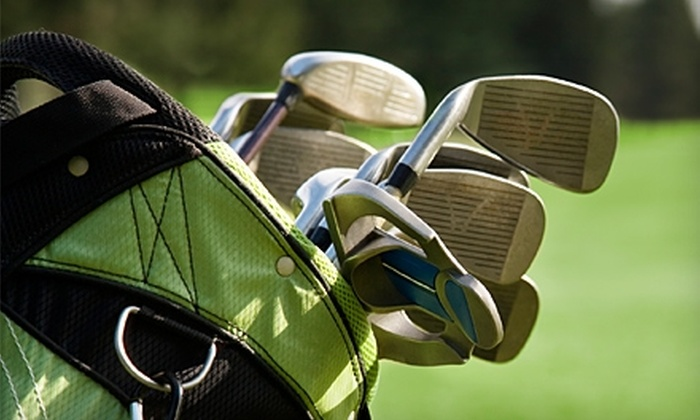 David Ayres' Lowcountry Custom Golf - Mount Pleasant: $50 for a Full Club Fitting at David Ayres' Lowcountry Custom Golf in Mount Pleasant ($125 Value)