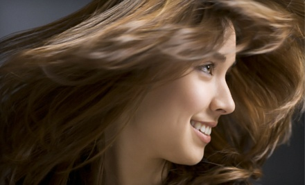 Deep-Conditioning Treatment, Haircut, and Blow-Dry (an $80 value) - MiLenka Organic Hair Studio in Stuart