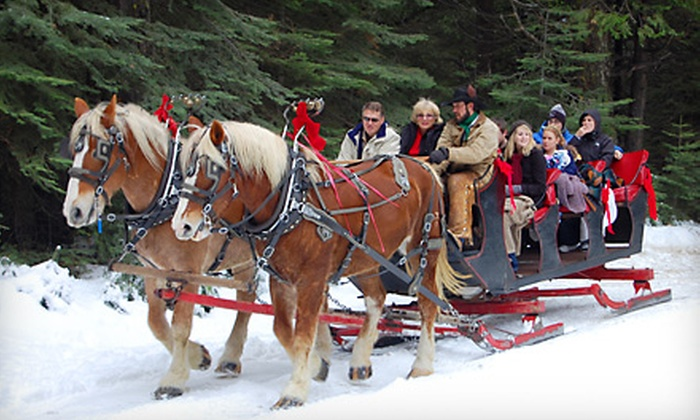 Yosemite Trails Pack Station - Fish Camp: $30 for a Sleigh Ride for Two from Yosemite Trails Pack Station (Up to $60 Value)