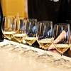 Up to 63% Off Wine Tastings at Plum Hill Vineyards