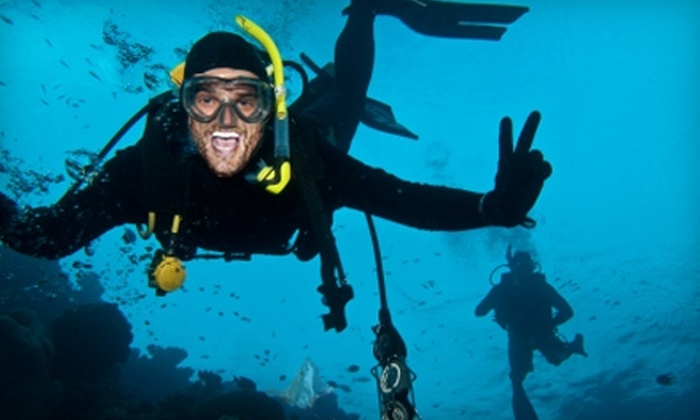 The Scuba Shop - Mesa: $39 for Beginners' Scuba Course at The Scuba Shop ($99 Value)