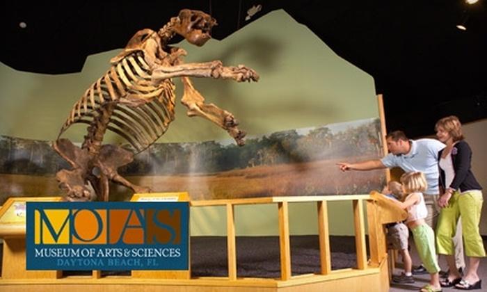 Museum Of Arts Sciences Daytona Beach