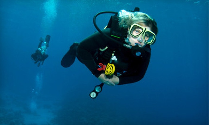 Paradise Divers - East Louisville: $20 for a Two-Hour Intro to Diving Class at Paradise Divers ($40 Value)
