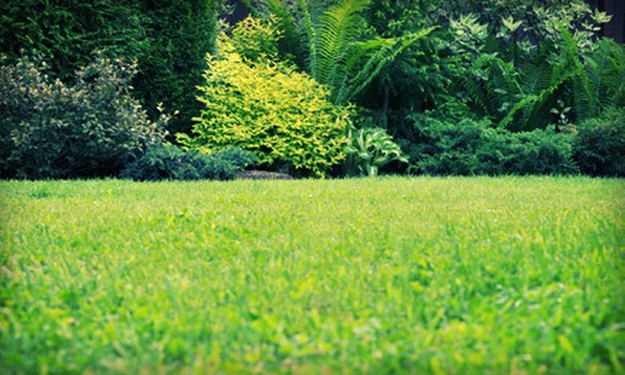 Weed Man - Winston-Salem: Weed-Control and Crabgrass Treatments for Lawn with Optional Slow-Release Fertilizer from Weed Man (Half Off)