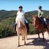 Half Off Horseback Ride at Westside Riding School