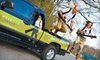 Mosquito Squad: Mosquito-Barrier-Spray Service from Mosquito Squad (Up to 66% Off). Three Options Available.