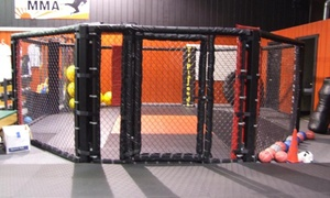 Southtowns MMA: Four Weeks of Unlimited Martial Arts Classes at Southtowns Mma (50% Off)