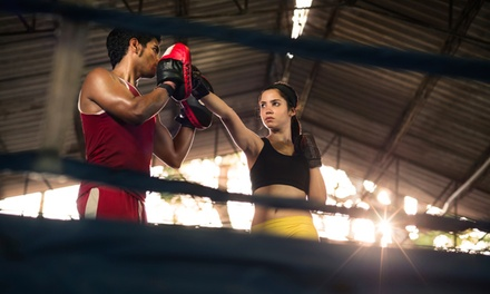 $20 for Three Krav Maga Classes and a Pair of Gloves at Empower Martial Arts ($100 Value)