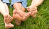 Brothers Landscaping - Central Jersey: Lawn-Care Package with Fertilization from Brothers Landscaping (Up to 59% Off)