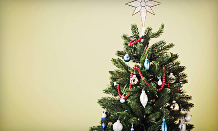 Trees-R-Us Christmas Trees - Multiple Locations: $34 for 6- to 7-Foot Grand Fir Christmas Tree at Trees-R-Us Christmas Trees (Up to $69.95 Value). Four Locations.