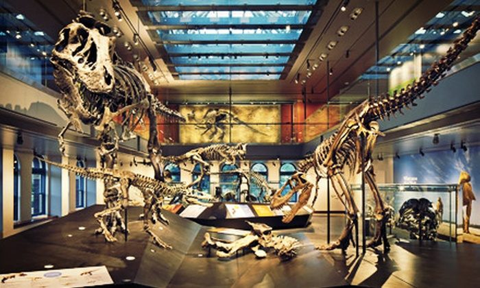 Natural History Museum of Los Angeles County - Natural History Museum of Los Angeles County: Membership to Natural History Museum of Los Angeles County (Up to 57% Off). Four Options Available.