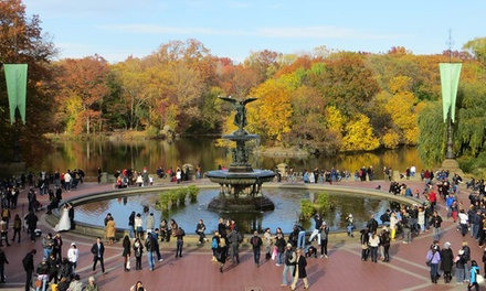 Two-Hour Walking Tour of New York City from New Old New York Tours (Up to 54% Off). Four Options Available.