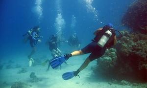 Buceo Pelicar: Bautismo de buceo desde embarcación por 29,95 € en la costa de Jávea