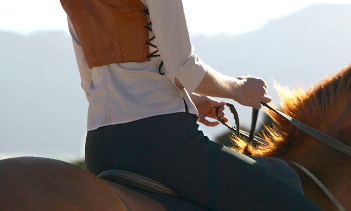 Westside Riding School - Will Rogers State Historic Park: Horseback Trail Rides at Westside Riding School (Up to 52% Off). Three Options Available.