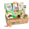 Purr-Pack of Cat Toys and Treats