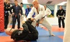 The Armory  - Sims Creek Plaza: Brazilian Jiu-Jitsu Classes with One Private Lesson at The Armory (89% Off)