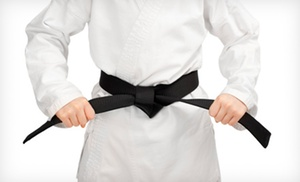 Valley Shore Martial Arts: $66 for $120 Worth of Martial-Arts Lessons at Valley Shore Martial Arts