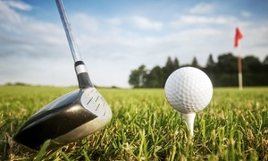 Reason's Golf Academy: Golf Instruction at Reason's Golf Academy (Up to 72% Off). Three Options Available.