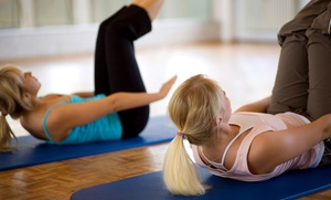 Pilates Center of East Lansing: Group or Individual Classes at Pilates Center of East Lansing (Up to 59% Off). Six Options Available.