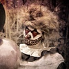 Up to 44% Off Scare Hawaii's Circus of the Dead Haunted House