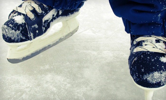 Mountain View Ice Arena - Mountain View: Public-Skate Admission for Two, 10 Skating Visits, or Hockey Outing for Four at Mountain View Ice Arena (Up to 55% Off)