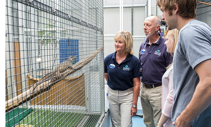 Shedd Aquarium - Museum Campus: $28 for a 50-Minute Guided Behind-the-Scenes Tour of the Shedd Aquarium (Up to $55.95 Value)