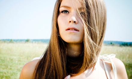 Haircut Packages or Brazilian Blowout at Styles by Karesha (Up to 60% Off). Four Options Available.
