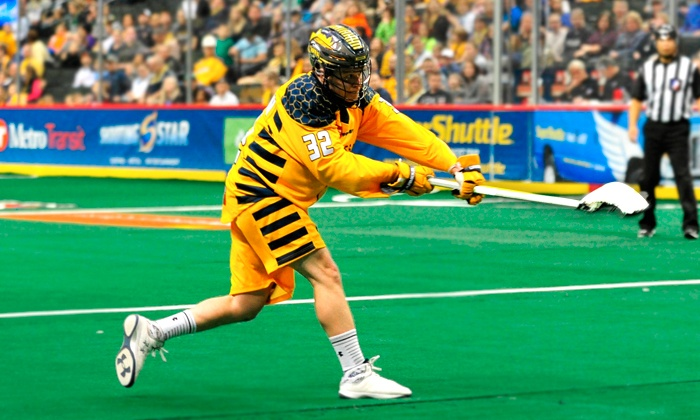 Georgia Swarm Lacrosse - The Arena at Infinite Energy Center: Georgia Swarm Professional Lacrosse Game on February 14