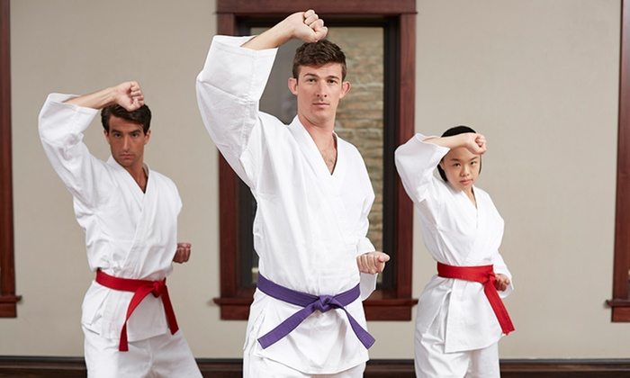 Sharkeys Karate - Naperville: Four Weeks of Unlimited Martial Arts Classes at Sharkey's Karate Studio - American Karate Association Headquarters (83% Off)