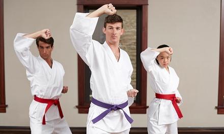 Karate america deals